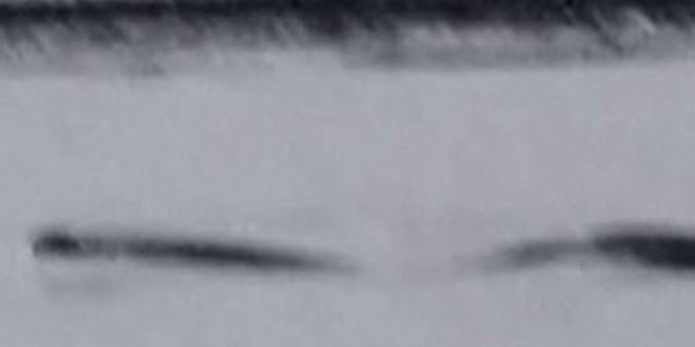 A video dating back to 2009 may provide new evidence of the existence of an Alaskan Loch Ness Monster, Discovery News reported.