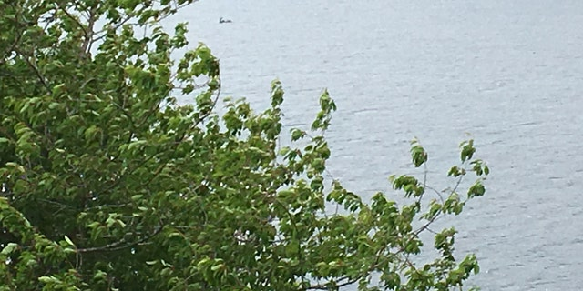 Photo of the object moving the in waters of Loch Ness (CASCADE NEWS)