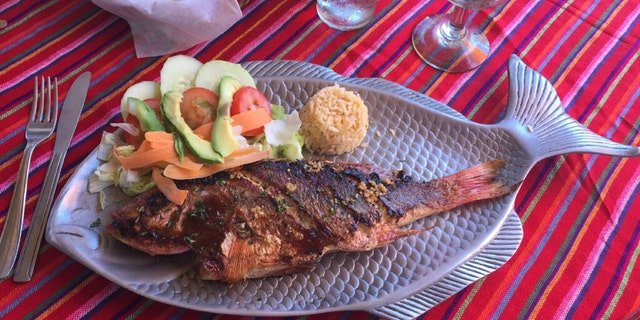 The red snapper is a signature dish at the at El Coral, established in 1975. El Coral is said to be the first restaurant in Cabo San Lucas.
