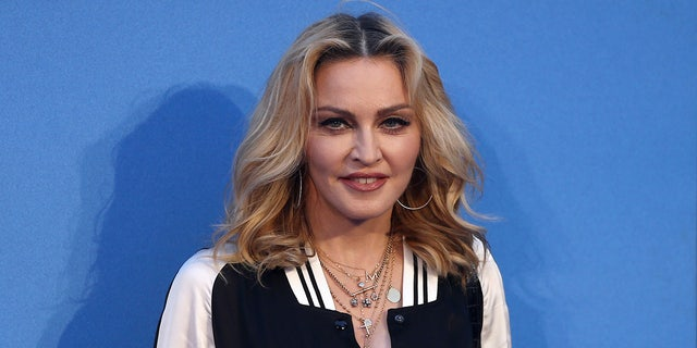Madonna took to the streets to call for gun control in America.