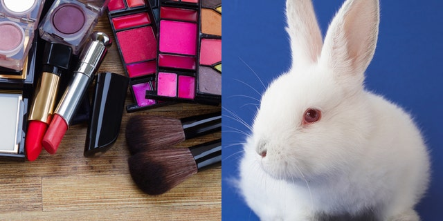 The Golden State could officially be the first to ban the testing of cosmetics on animals like rabbits.