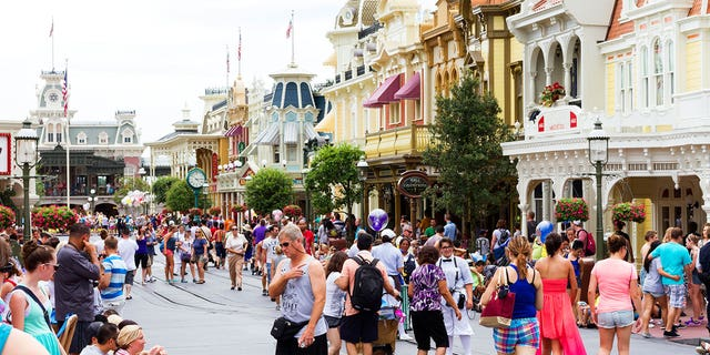 "Among the suspects arrested included one man who worked as a project manager in Disney World's costume department, and another who didn't work at the park, but was a ""Disney annual pass holder and frequently attends the theme park alone."""