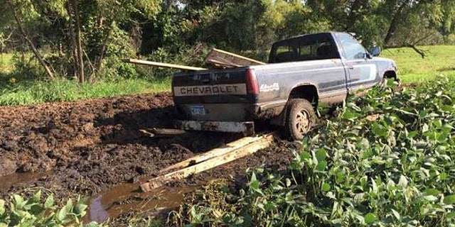 Deputies said this truck carrying stolen lumber got stuck in a large manure pile during the getaway.