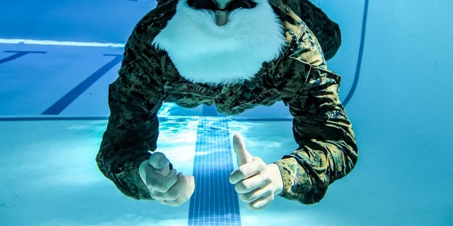 The Honorable Mr. Santa Claus, Commanding Officer of Holiday Cheer, NORTHPOLECOM, conducts basic swim qualification at Camp Pendleton, Calif., Dec. 19, 2017.