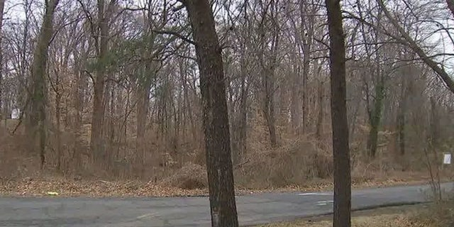 Damaris Alexandra Reyes Rivas' body was found in a park in Springfield, Va.