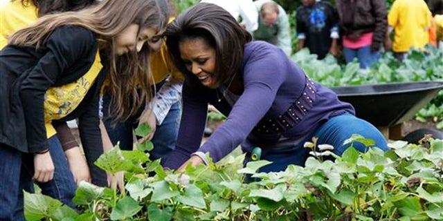 Michelle Obama in the White House kitchen garden