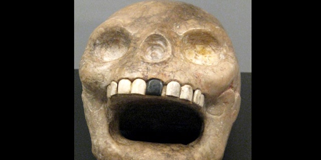 The Mayan skull is set to go on display at the Royal Ontario Museum.