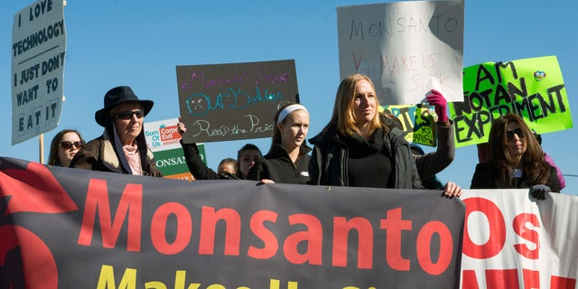 Activists protest against the production of herbicides and GMO (genetically modified organisms) food products outside Monsanto headquarters during its annual shareholders meeting in Creve Coeur, Missouri, January 30, 2015. REUTERS/Kate Munsch