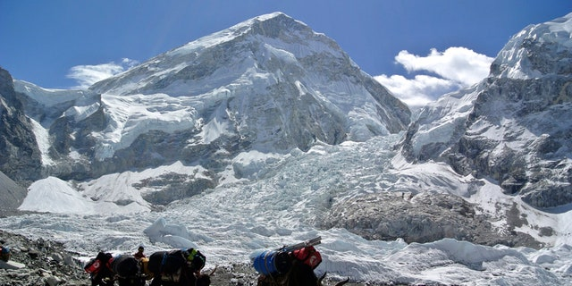 Yaks carrying mountaineering equipments return to base camp after Mount Everest expeditions were cancelled in Solukhumbu district April 27, 2014.