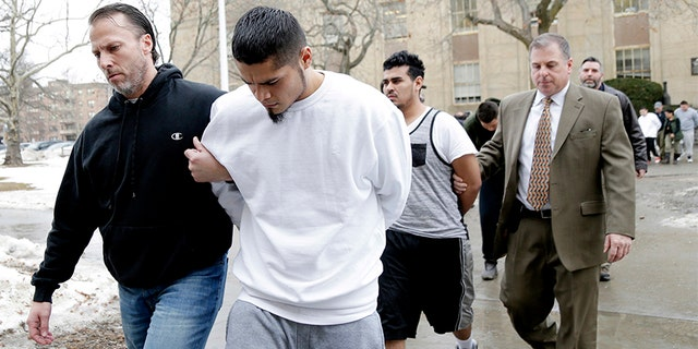 In this Jan. 11, 2018 file photo, suspected members of the MS-13 gang are escorted to their arraignment in Mineola, N.Y. A sweep of alleged MS-13 gang members on Long Island has racked up impressive arrest totals but also left unanswered questions, the Associated Press reports.