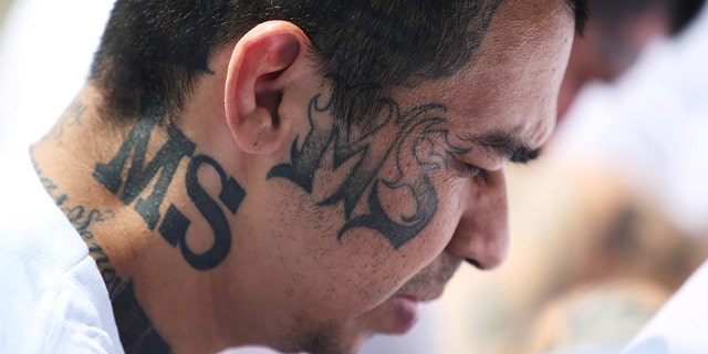 The violent street gang MS-13 has made its presence felt in small towns and suburbs.
