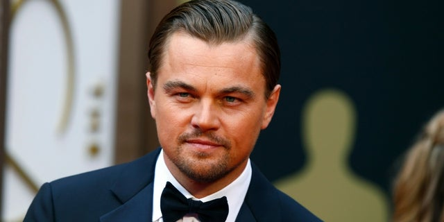 Leonardo DiCaprio has asked Weinstein Co. not to sell its assets until he's examined the studio's finances.