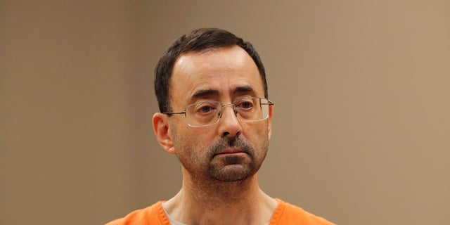 Larry Nassar pleaded guilty Wednesday to multiple counts of criminal sexual conduct.