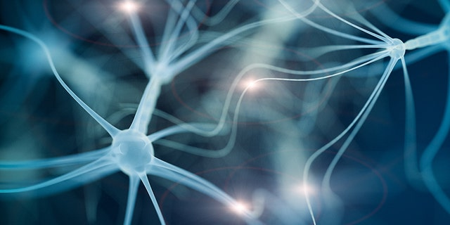 Neuron cell network - 3d rendered image on black background