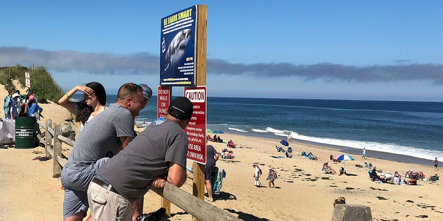 "Visitors to Newcomb Hollow Beach on Saturday stand near a sign urging residents to ""Be Shark Smart"" when entering the water."