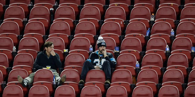 Feb. 7, 2016: Carolina Panthers fans sit in the stands after Super Bowl 50 in Santa Clara, Calif. (AP Photo/Charlie Riedel)