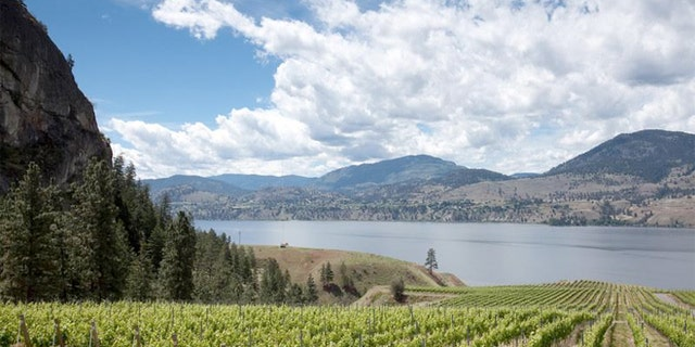 Some wineries don't charge a tasting fee. And right now, there's a favorable exchange rate for the U.S. dollar.