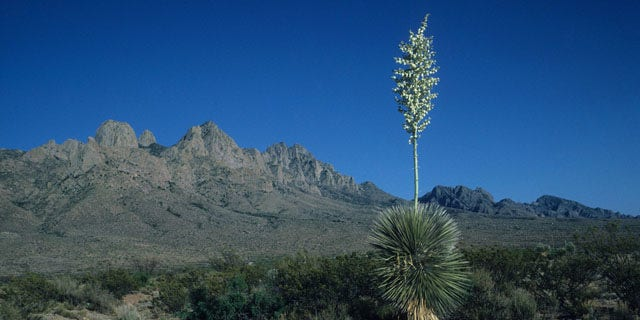 """In a letter to Sen. Jeff Bingaman, U.S. Customs and Border Protection Commissioner Alan Bersin wrote that a revised Organ Mountains-Desert Peaks Wilderness Act, or S.B. 1689, will """"significantly enhance"""" the flexibility of  CBP officials to operate near the mountain range in southern New Mexico."""
