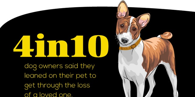 The study, conducted by Link AKC, suggests that dogs aid in the emotional health of their owners.