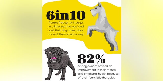 The majority of survey subjects said their pets contributed to their mental and emotional health.