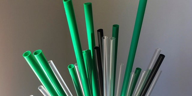 The European Union is proposing bans on plastic products like cotton buds, straws, stirs and balloon sticks when alternatives are easily available in an attempt to cut marine litter.