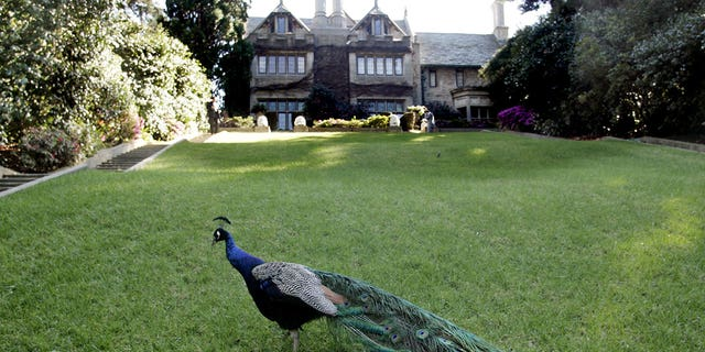 The Playboy Mansion, which sits on five acres of land, was also home to its own zoo.