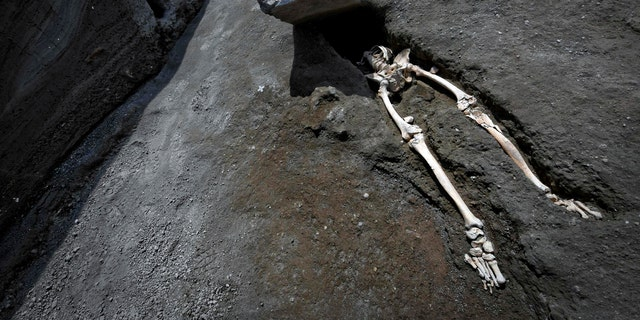 The legs of a skeleton emerge from the ground beneath a large rock believed to have crushed the victim's bust during the eruption of Mt. Vesuvius in A.D. 79, which destroyed the ancient town of Pompeii, at Pompeii's archeological site, near Naples, on Tuesday, May 29, 2018. (Ciro Fusco/ANSA via AP)