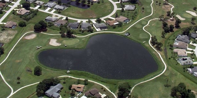 The view from SkyFOX showed a large alligator peering out from the pond while Florida Fish & Wildlife officers looked on.