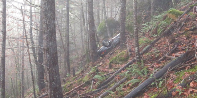 The vintage Porsche was discovered by a man walking his dog in the woods.