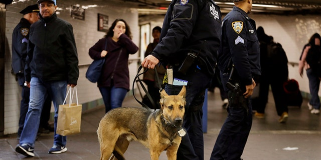 Police officers and a police dog patrol after a terrorist struck Port Authority with a homemade bomb.