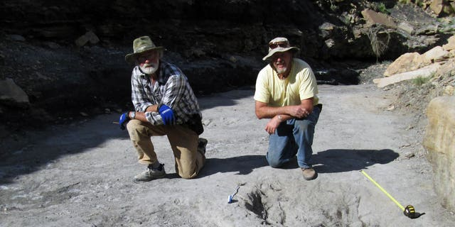Team leader Martin Lockley (right) and co-author (Ken Cart) kneel beside two large Cretaceous-age scrapes from western Colorado that are the first physical-reported evidence that large theropod dinosaurs engaged in courtship behavior.