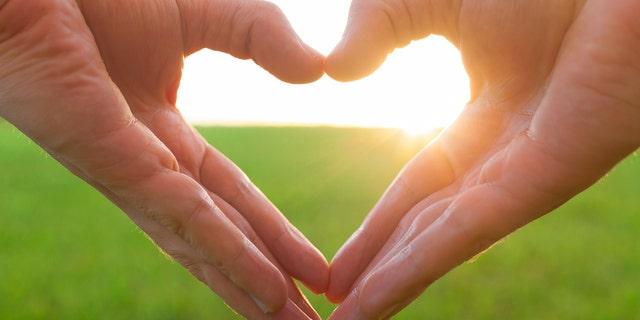 Love shape hands against natural background.