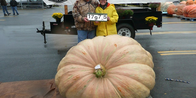 No fear: Larry and Gerry Checkon, shown here with their 1,797-pound pumpkin at the Great Pumpkin Commonwealth Weigh-off in Altoona, Pa., don't believe their squash is a threat to the planet. (Courtesy: Pennsylvania Giant Pumpkin Growers Association)