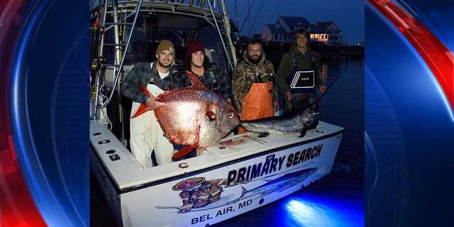 The crew smiles with their 105 pound catch.