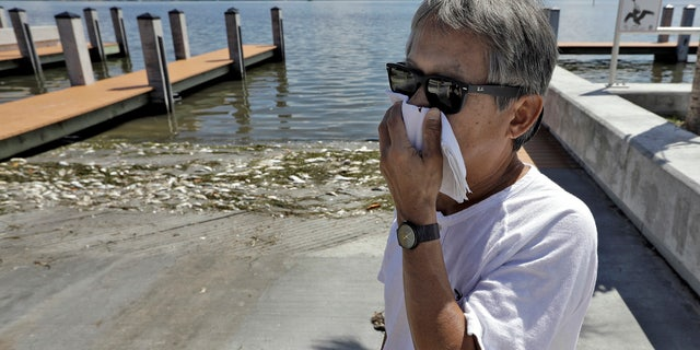 In this Monday Aug. 6, 2018 photo, Alex Kuizon covers his face as he stands near dead fish at a boat ramp in Bradenton Beach, Fla.