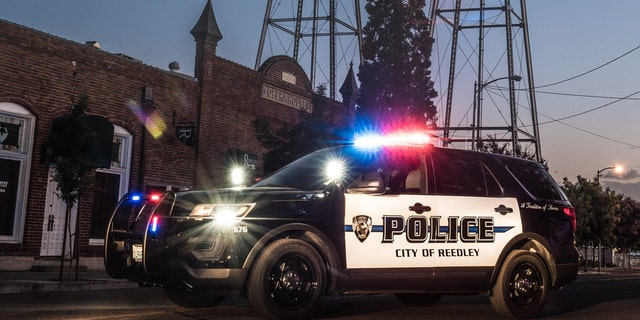 Officers responded to a call Monday and found that a mother drowned her two children and killed herself, Reedley Police said.
