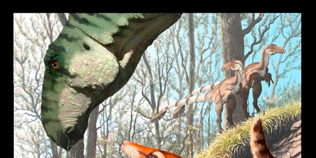 "The 130 million-year-old fossilized skull belonged to a ""reptile-like mammal.""(Illustration: Jorge A. Gonzalez)"