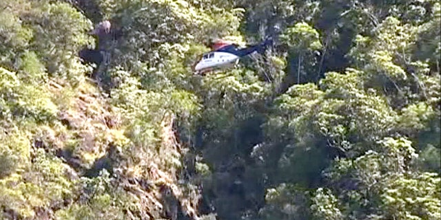 In this image taken from the Australian Broadcasting Corporation video, South Korean backpacker Joohee Han, 25, is seen being rescued by helicopter, Thursday, June 7, 2018, in Tully, Queensland, Australia.