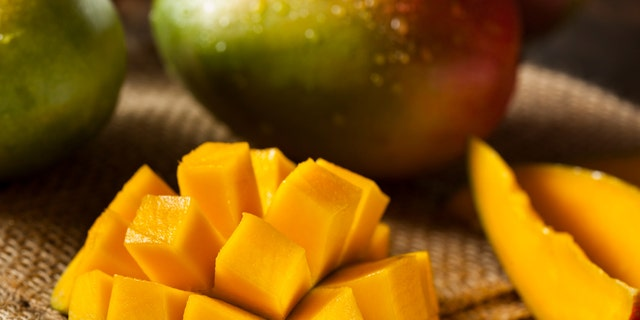 Organic Colorful Ripe Mangos on a Background