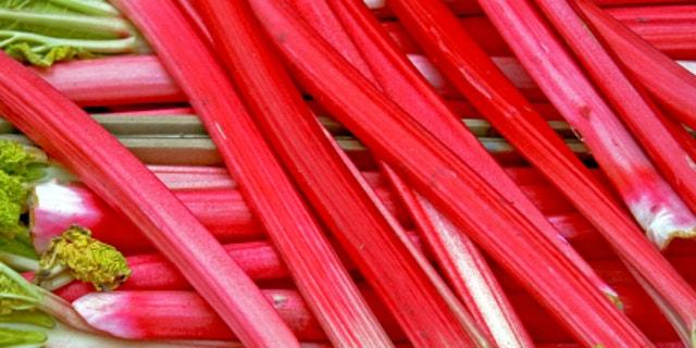 A bunch of fresh organic red rhubarb