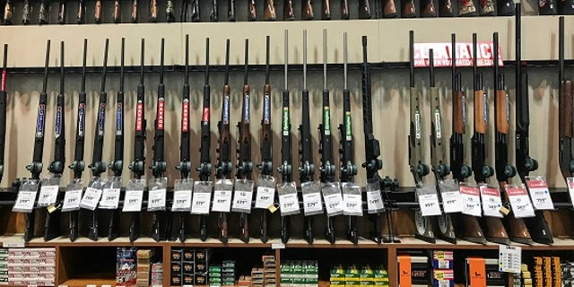 Dick's Sporting Goods announced it would stop selling assault-style rifles in February following the Parkland massacre.