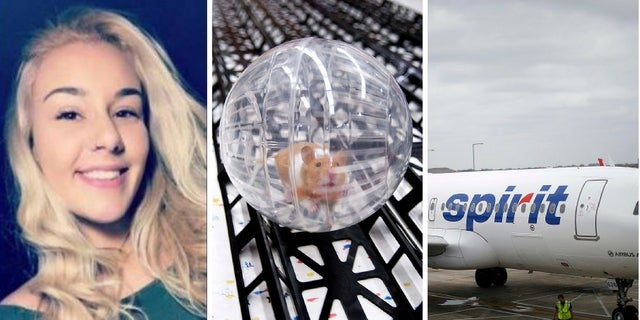 Belen Aldecosea said she flushed her emotional support hamster down the toilet after Spirit Airlines refused her furry pet on the flight.