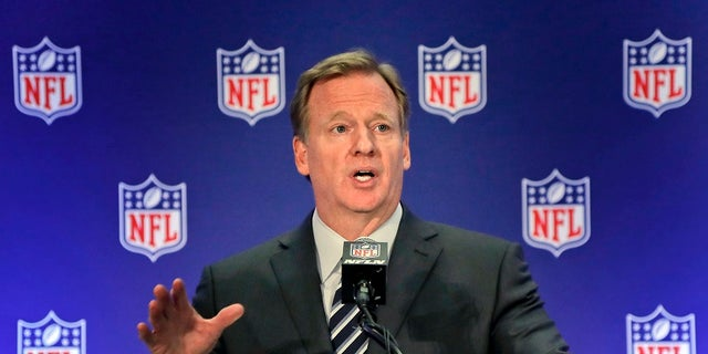 Roger Goodell has been applauded for making the NFL profitable.