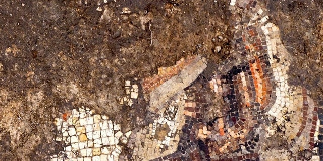 The mosaic uncovered in Caesarea and conservation work by the Israel Antiquities Authority. (Photo: Assaf Peretz, Israel Antiquities Authority)
