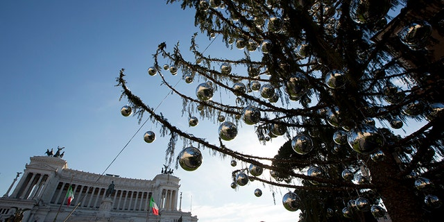 The Rome's official Christmas tree stands in front of the Unknown monument in Piazza Venezia Square.