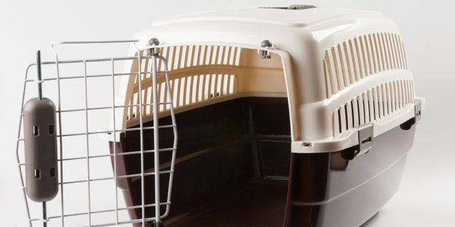 Opened pet travel plastic carrier on white