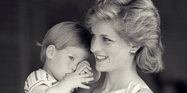 The Drake Hotel in Chicago is offering the same menu Princess Diana was served when she stayed at the Chicago hotel more than 20 years ago.