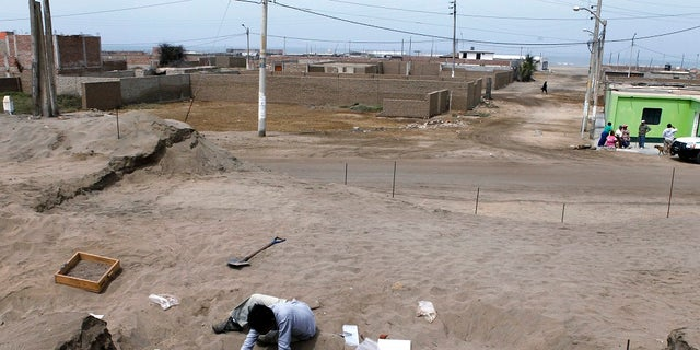 In this 2011 photo, archaeological students clean the remains of children and young llamas in the fishing town of Huanchaquito, Trujillo.