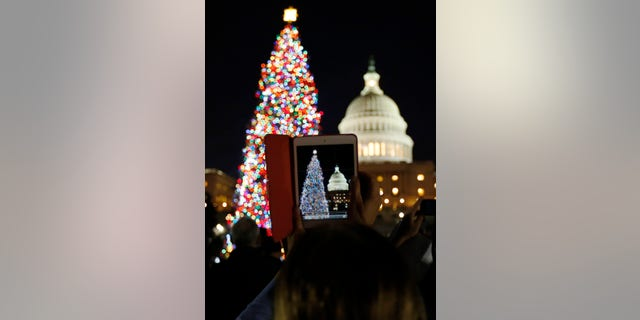 A woman takes a picture with her iPad Mini during the official lighting ceremony of the U.S. Capitol Christmas Tree in Washington December 4, 2012. (REUTERS/Jason Reed)