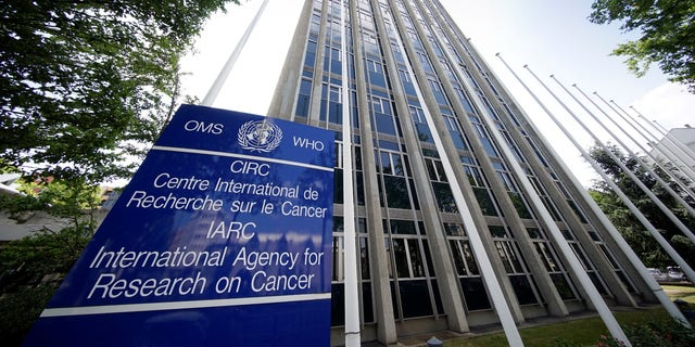FILE -- External view of the International Agency for Research on Cancer (IARC) in Lyon, France, June 12, 2017. Picture taken June 12, 2017.